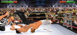 Wrestling 3D